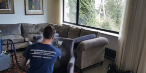 pulizia sanificazione divani roma